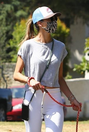 Alessandra Ambrosio - Taking her pooch for a walk in Santa Monica