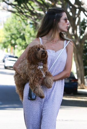 Alessandra Ambrosio - With her dog out in West Hollywood