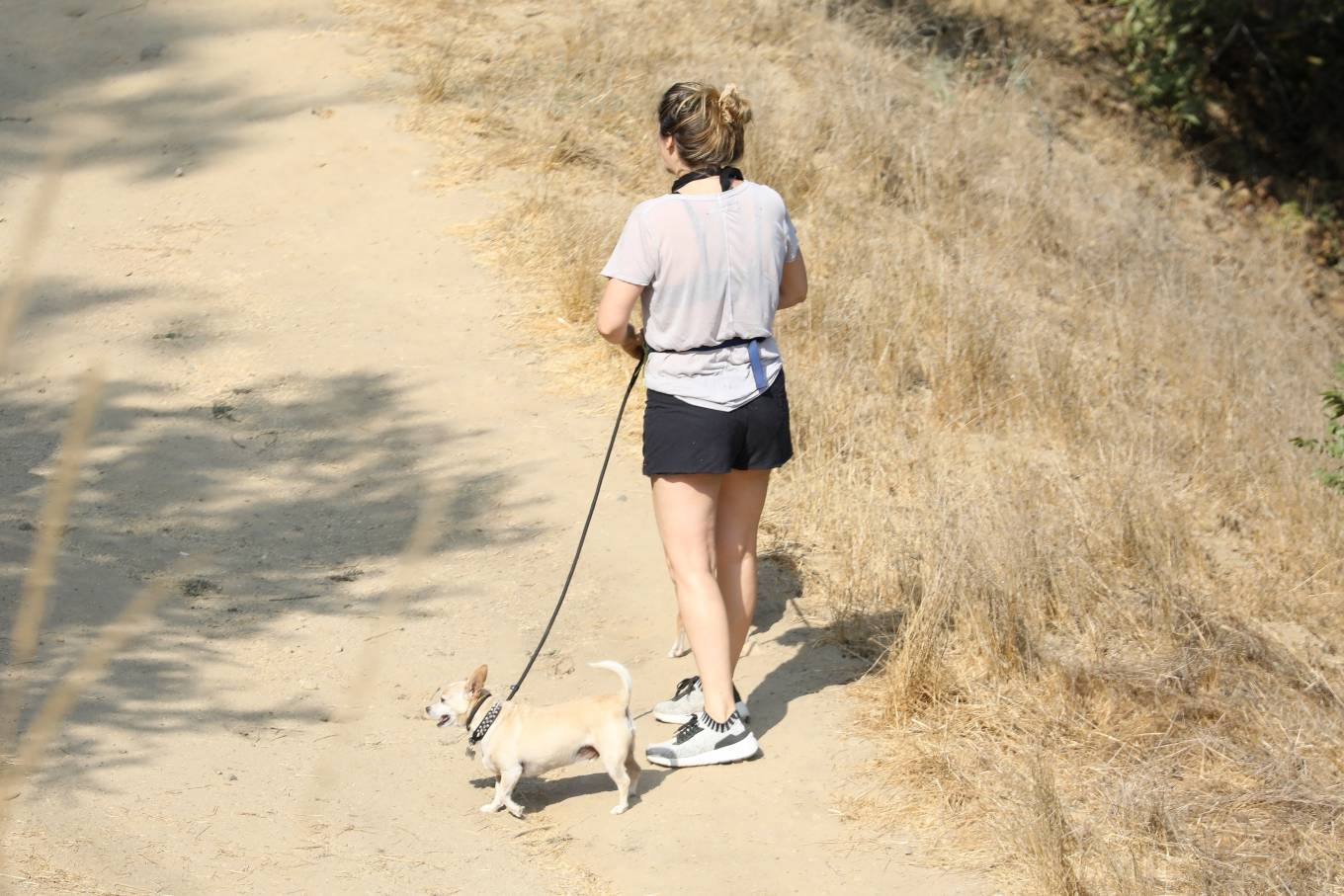 Alicia Silverstone 2020 : Alicia Silverstone – Hike with her dogs and a friend in Los Angeles-07
