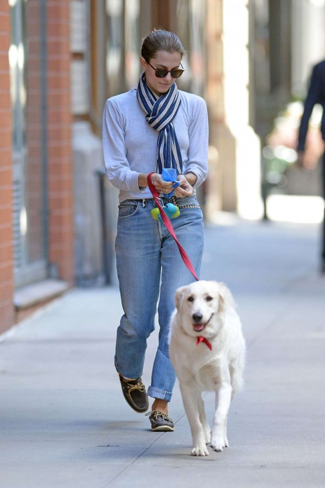 Allison Williams - Walking her dog in New York