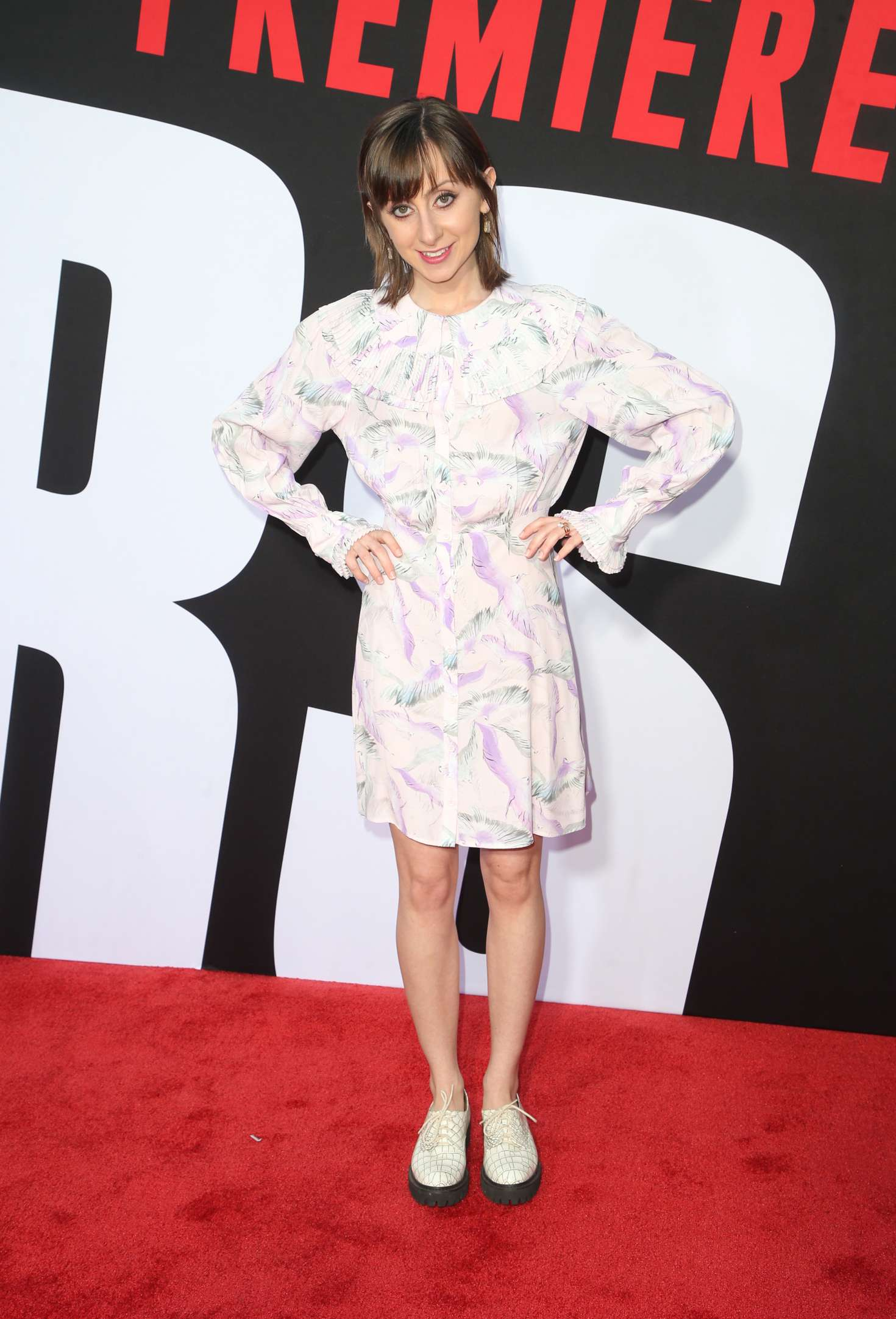 Allisyn Ashley Arm 2018 : Allisyn Ashley Arm: Blockers Premiere in Los Angeles -09