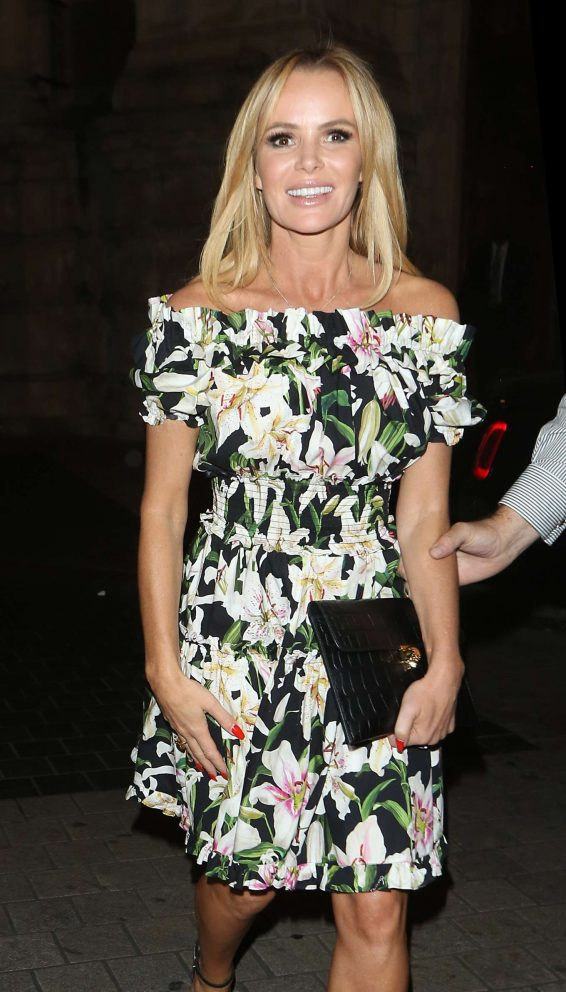 Amanda Holden - SYCO Summer Party at Victoria and Albert Museum in London