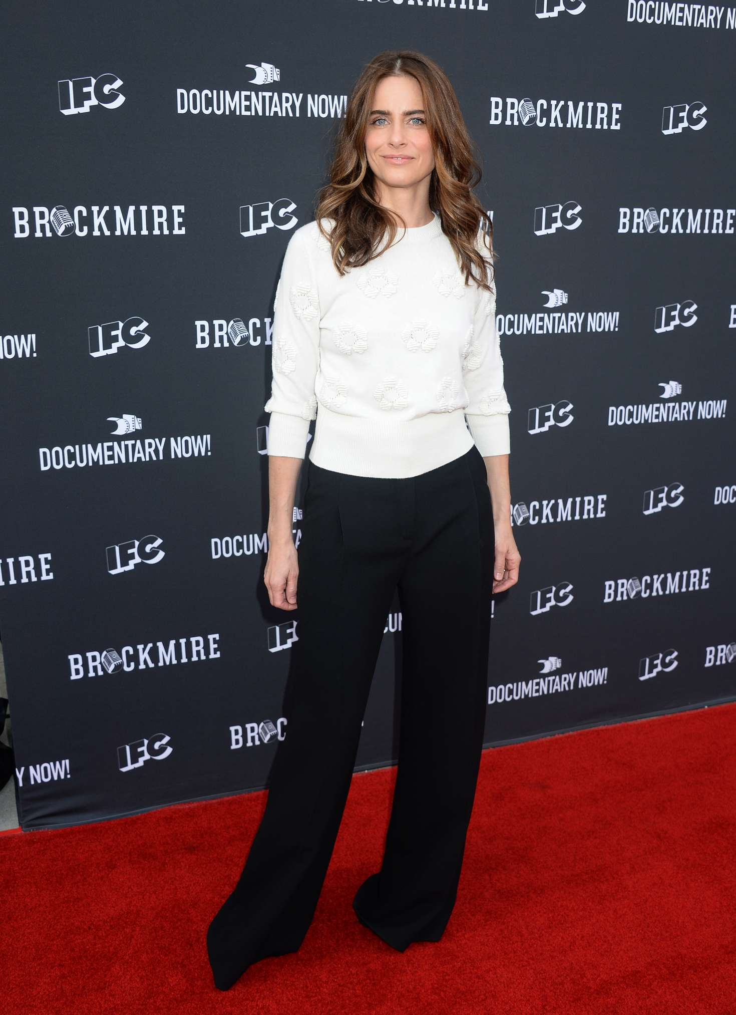 Amanda Peet: FYC Event For IFCs Brockmire And Documentary Now -14 - Full Size
