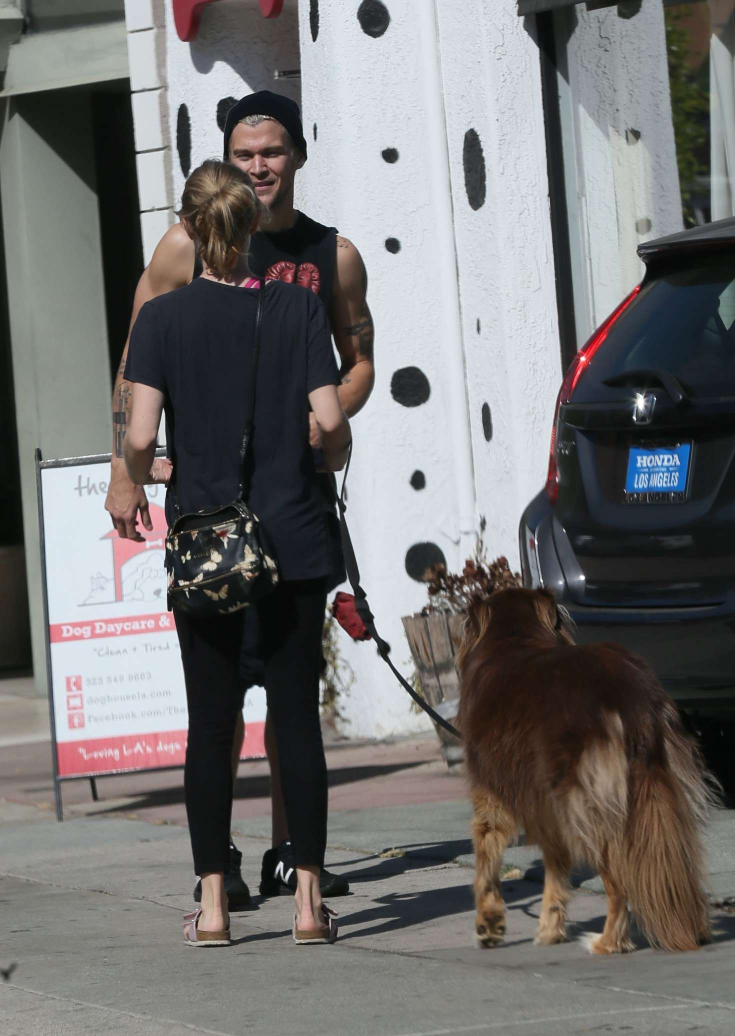 Amanda seyfried in spandex at the dog house for daycare in for Dog boarding los angeles