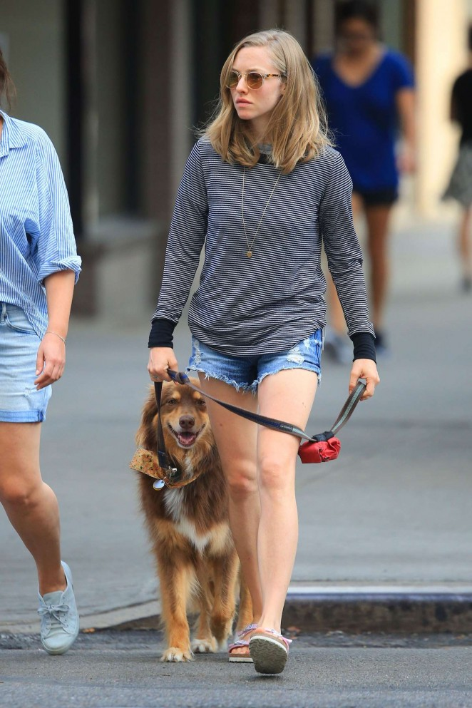 Amanda Seyfried out with Finn in New York