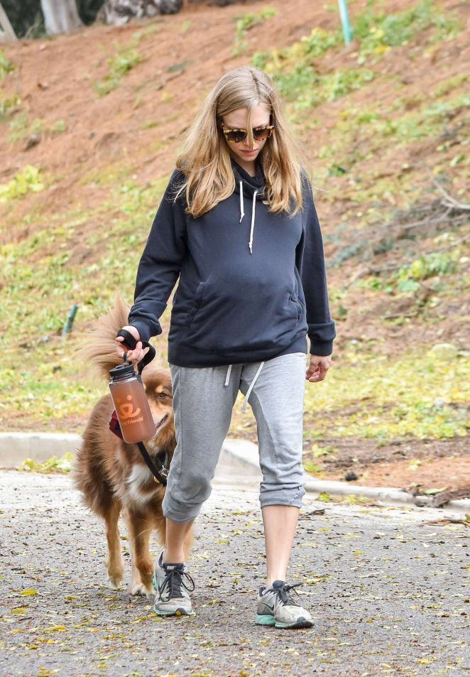 Amanda Seyfried takes her dog Finn for a walk in Los Angeles
