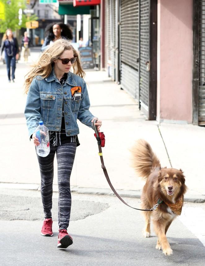Amanda Seyfried - Walking her dog Finn in NYC