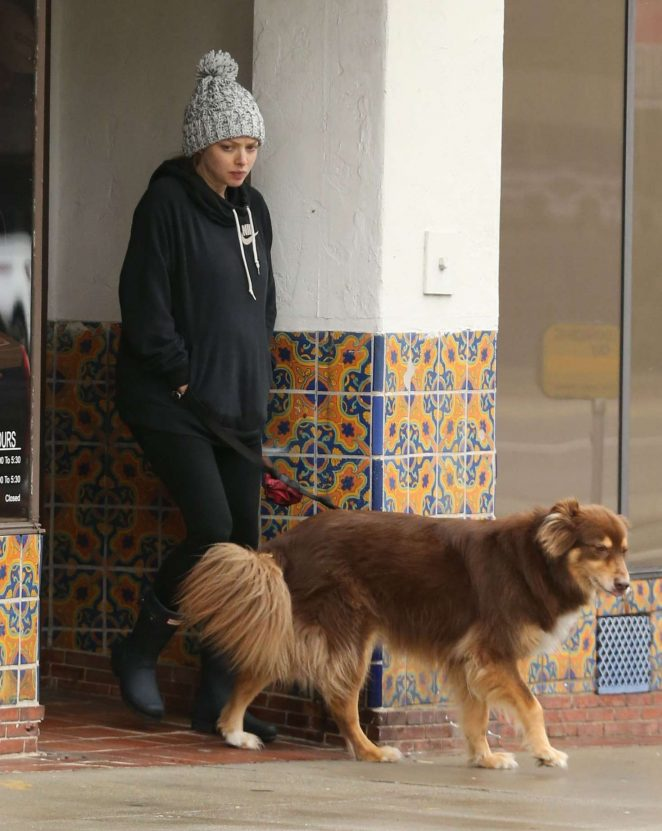 Amanda Seyfried - Walking Her Dog in Hollywood