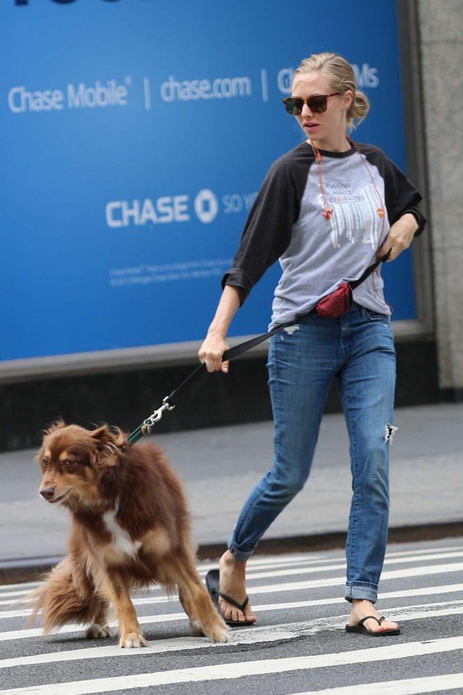 Amanda Seyfried – Walking her dog in New York