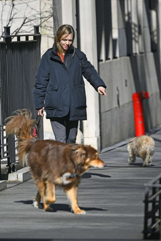 Amanda Seyfried - Walks her dog in New York
