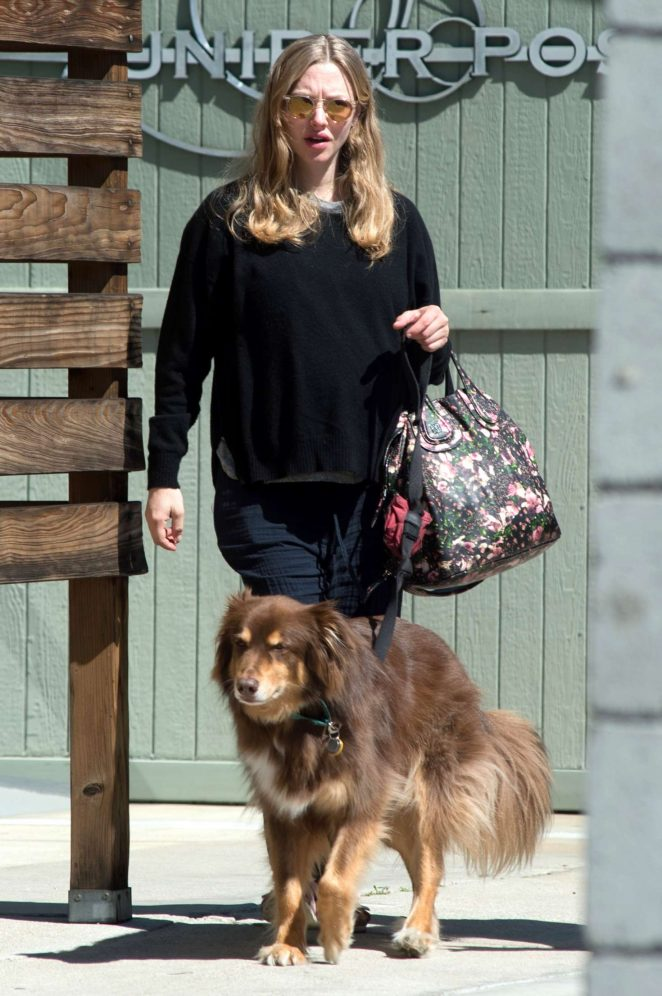 Amanda Seyfried with her dog Finn in Los Angeles