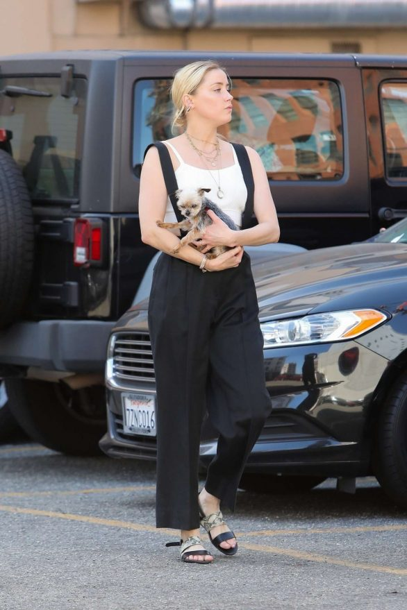 Amber Heard - Shopping with her little dog in LA