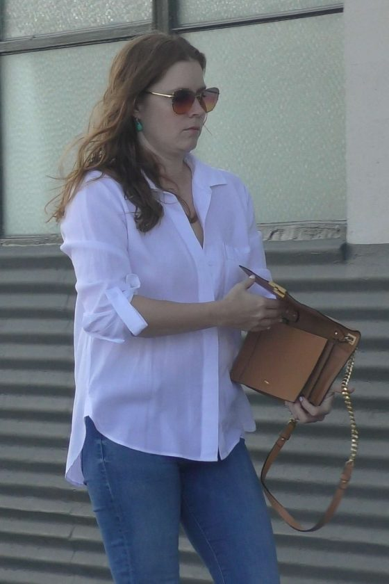 Amy Adams - Arrives for a meeting in LA