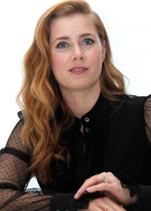 Amy Adams - 'Batman v Superman: Dawn of Justice' Press Conference in LA