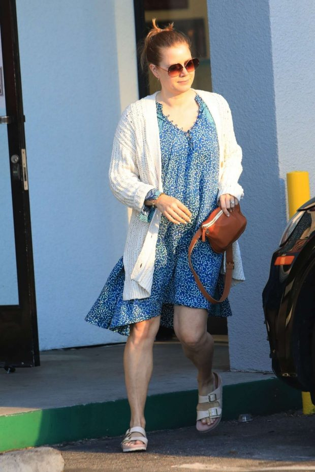 Amy Adams - Out in Los Angeles