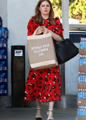Amy Adams - Shopping for Sushi and veggies in Beverly Hills