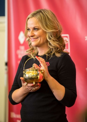 Amy Poehler - 2015 Hasty Pudding Award at Harvard University