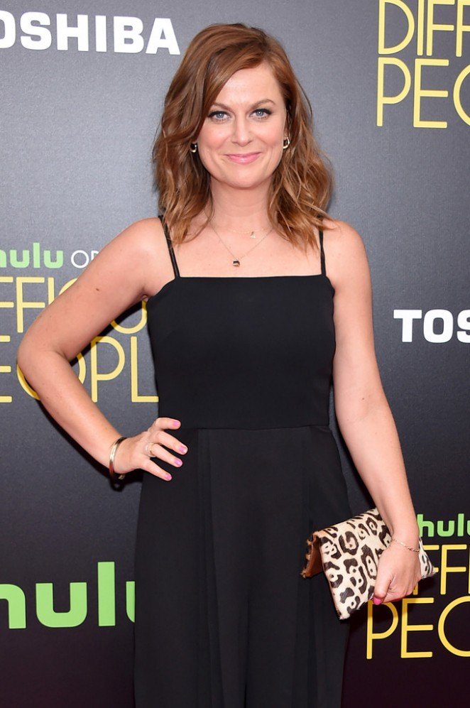 Amy Poehler - 'Difficult People' Premiere in New York City