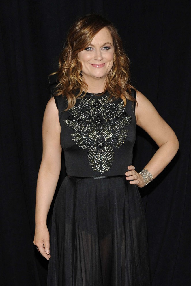 Amy Poehler - 'Sisters' Premiere in NYC