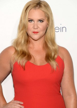 Amy Schumer - 2015 ELLE Women in Hollywood Awards in LA