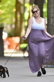Amy Schumer in Long Dress - Walking her dog Tati in New York City