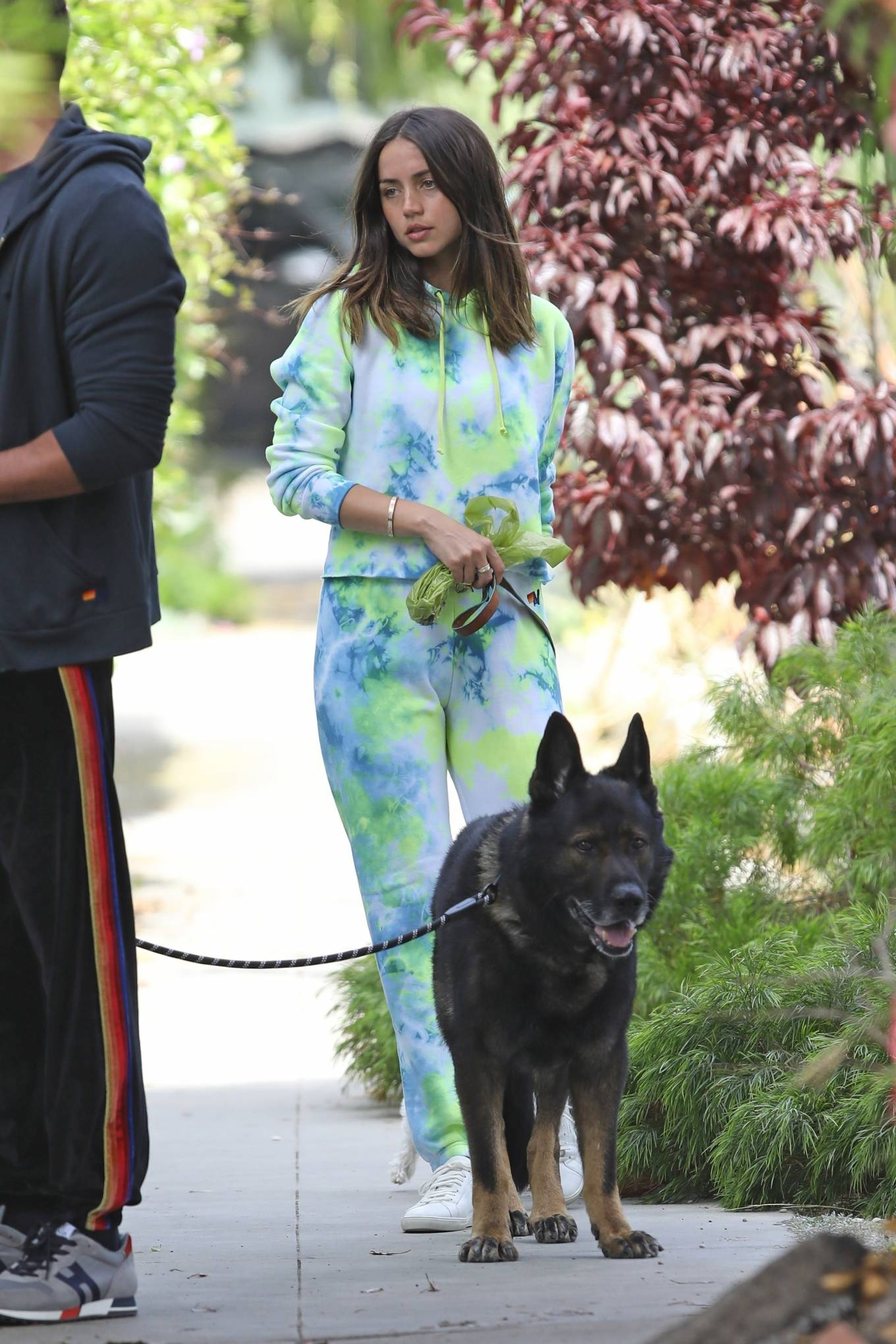 Ana de Armas 2020 : Ana De Armas and Ben Affleck – Taking their dogs for a stroll in Venice-04