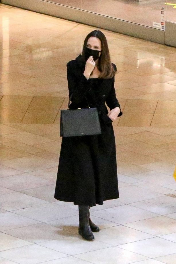 Angelina Jolie - Shopping in Los Angeles