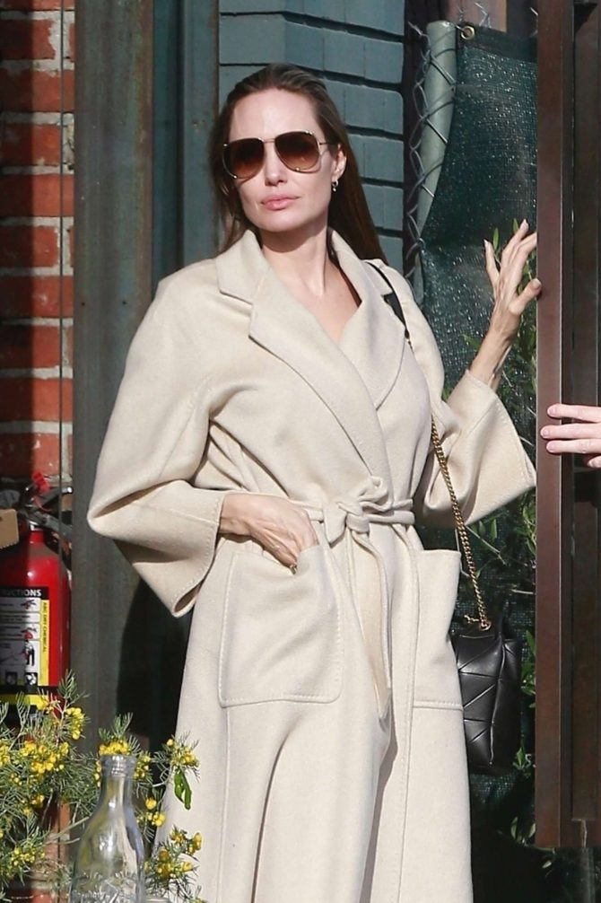Angelina Jolie – Shopping in Santa Monica