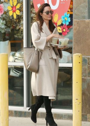 Angelina Jolie - Shopping in Studio City