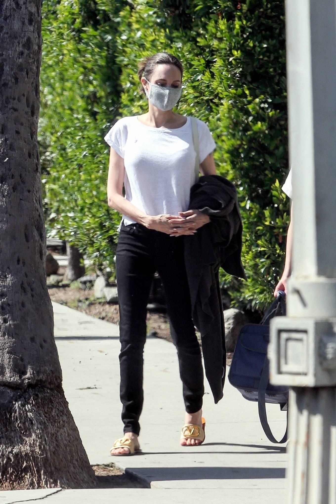 Angelina Jolie - Spotted at Petco in Los Feliz