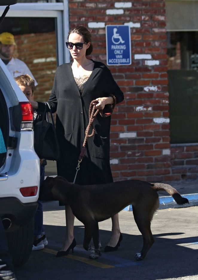 Angelina Jolie – Takes her dogs to the pet store -03
