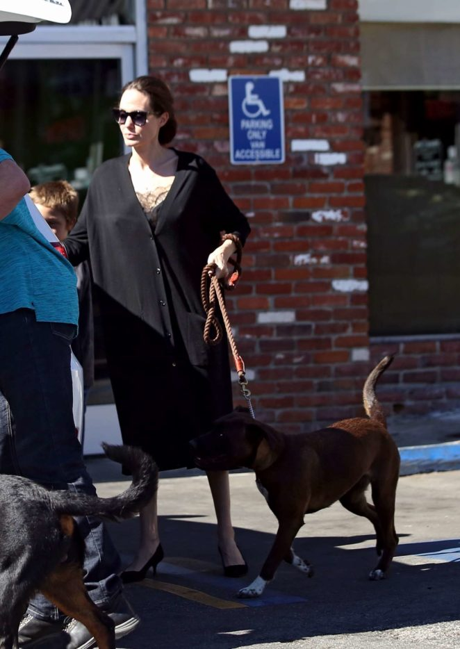 Angelina Jolie – Takes her dogs to the pet store -05