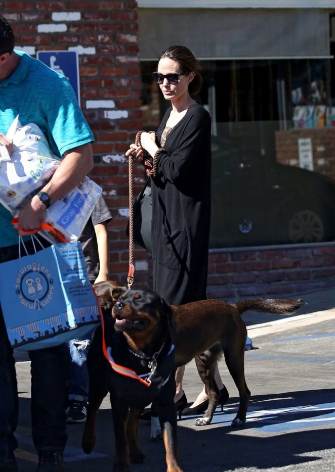 Angelina Jolie – Takes her dogs to the pet store -07