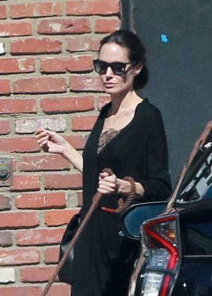 Angelina Jolie - Takes her dogs to the pet store in Los Angeles