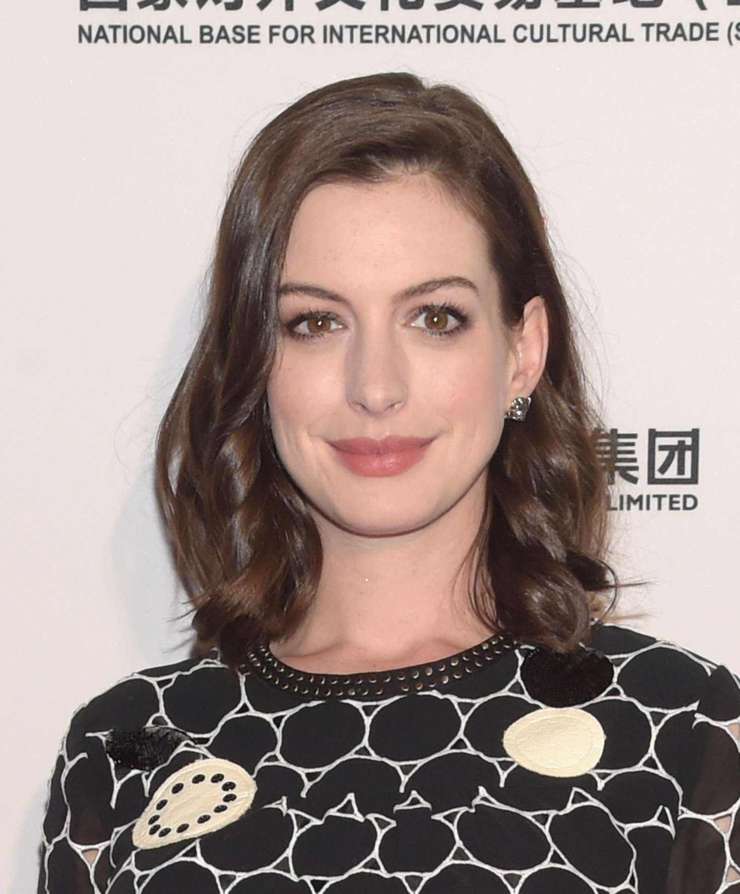 Anne Hathaway  The LA Art Show and The Los Angeles Fine Art Show 2016 - ae6f6b290611