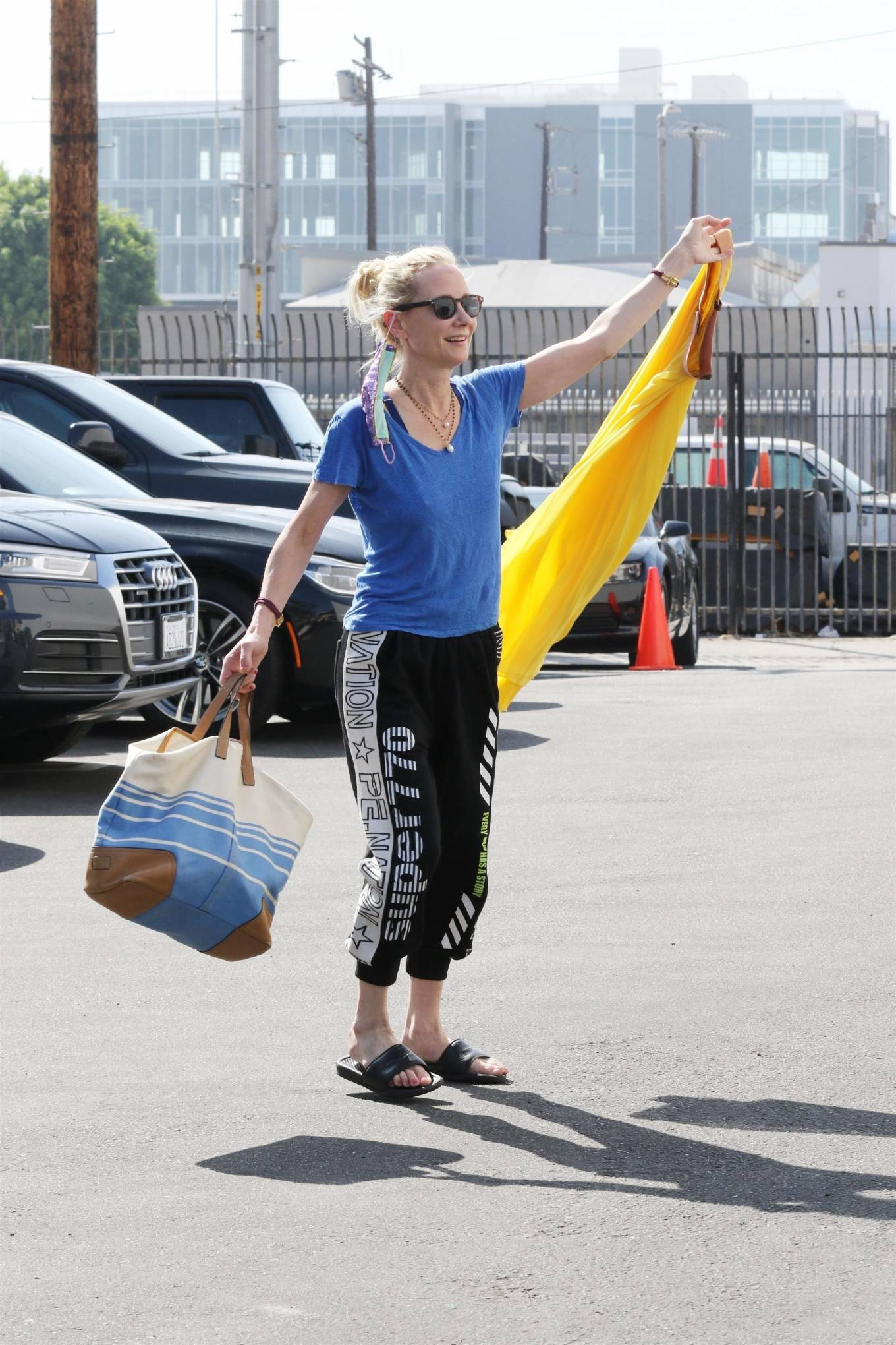 Anne Heche - Poses up for the cameras in Los Angeles