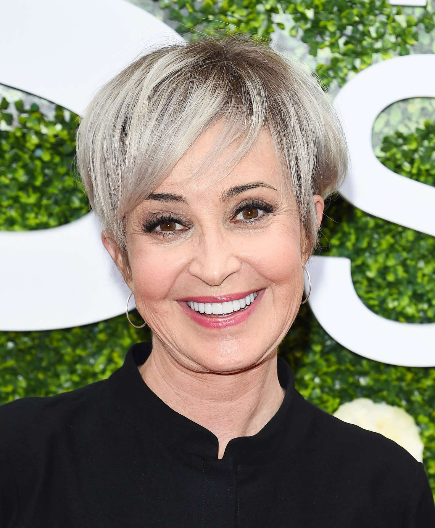 Annie Potts: 2017 CBS Television Studios Summer Soiree TCA ...Annie Potts 2013