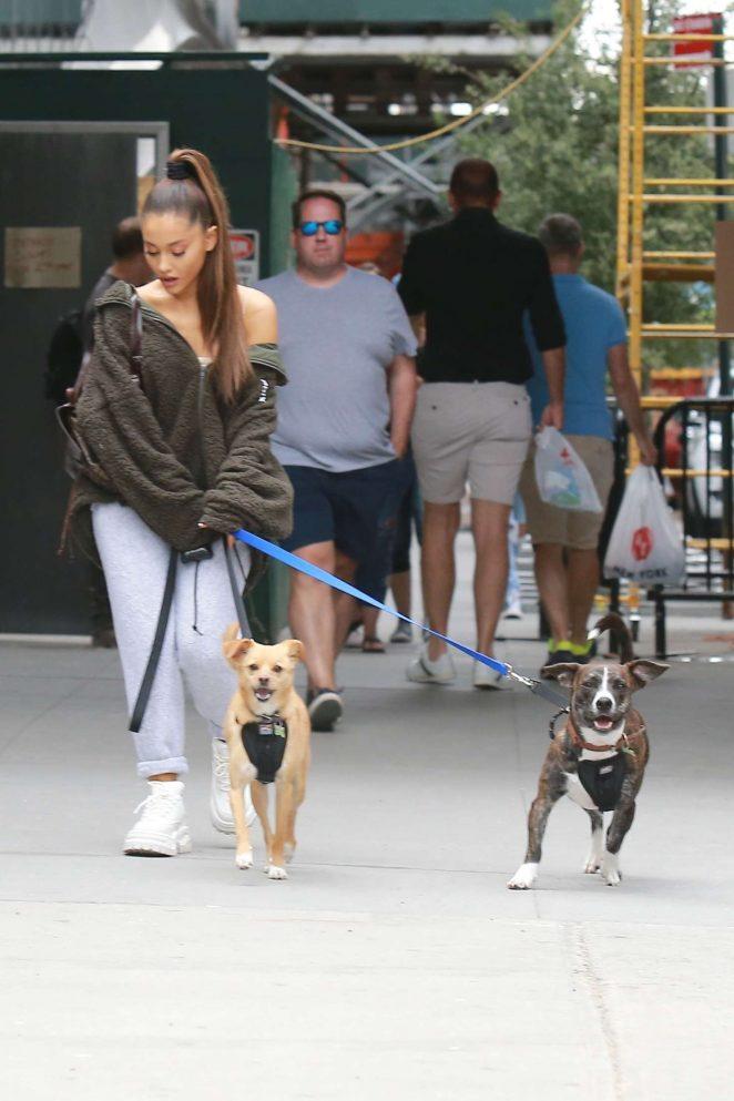 Ariana Grande: Walking her dog in New York -10