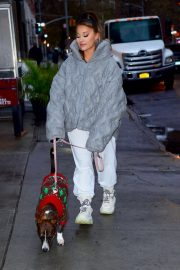 Ariana Grande with her dog out in New York City