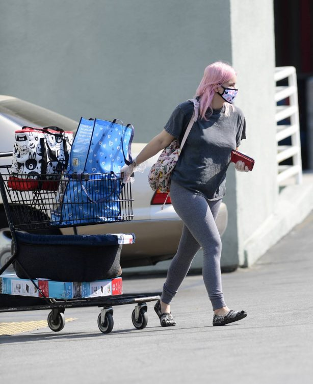Ariel Winter - Spotted outside Petco in Los Angeles