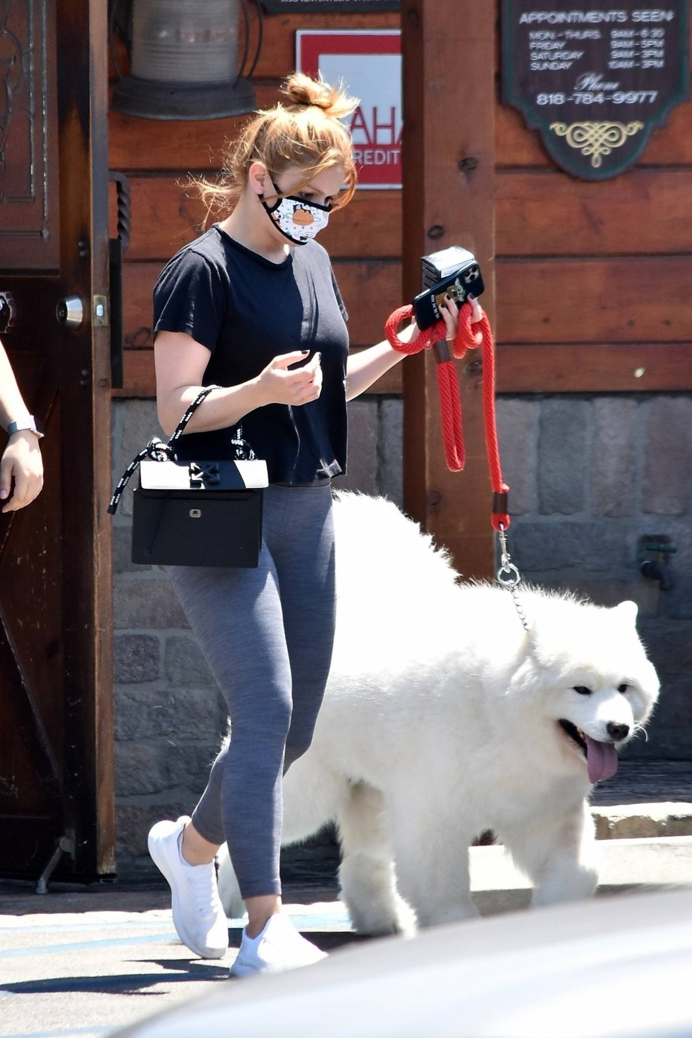 Ariel Winter 2020 : Ariel Winter – Takes her dog to the Veterinarian for a routine check up in Studio City-04
