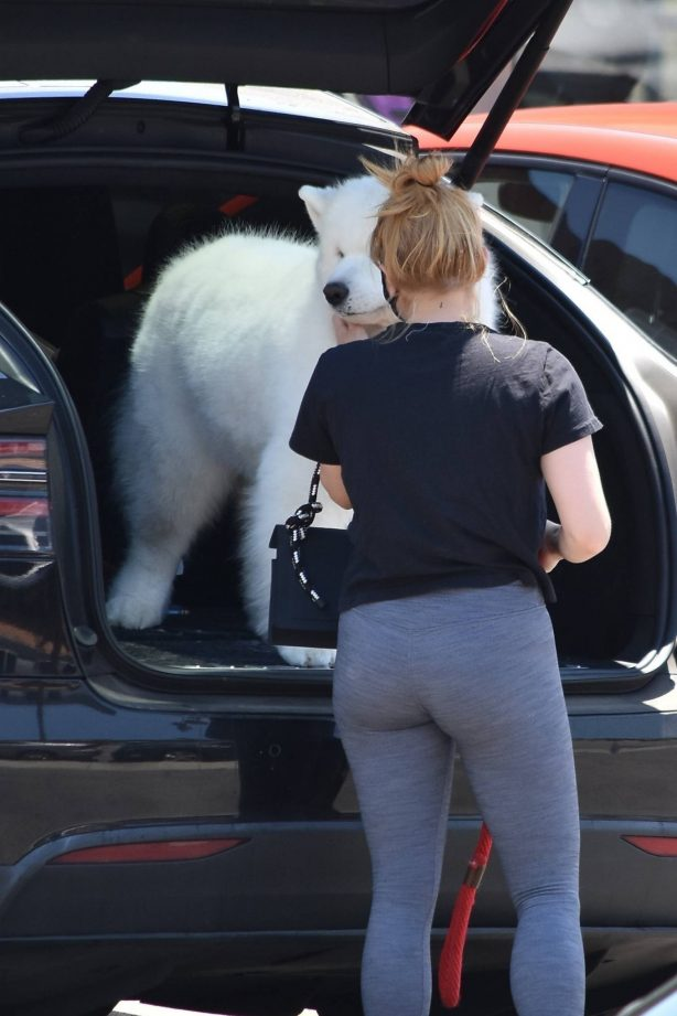 Ariel Winter - Takes her dog to the Veterinarian for a routine check up in Studio City