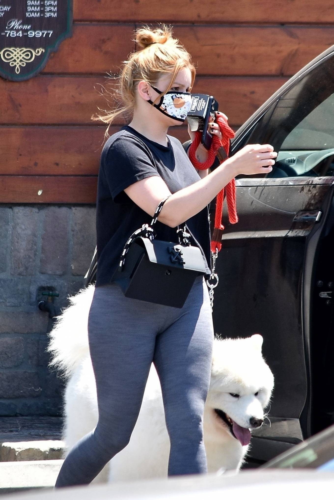 Ariel Winter 2020 : Ariel Winter – Takes her dog to the Veterinarian for a routine check up in Studio City-08