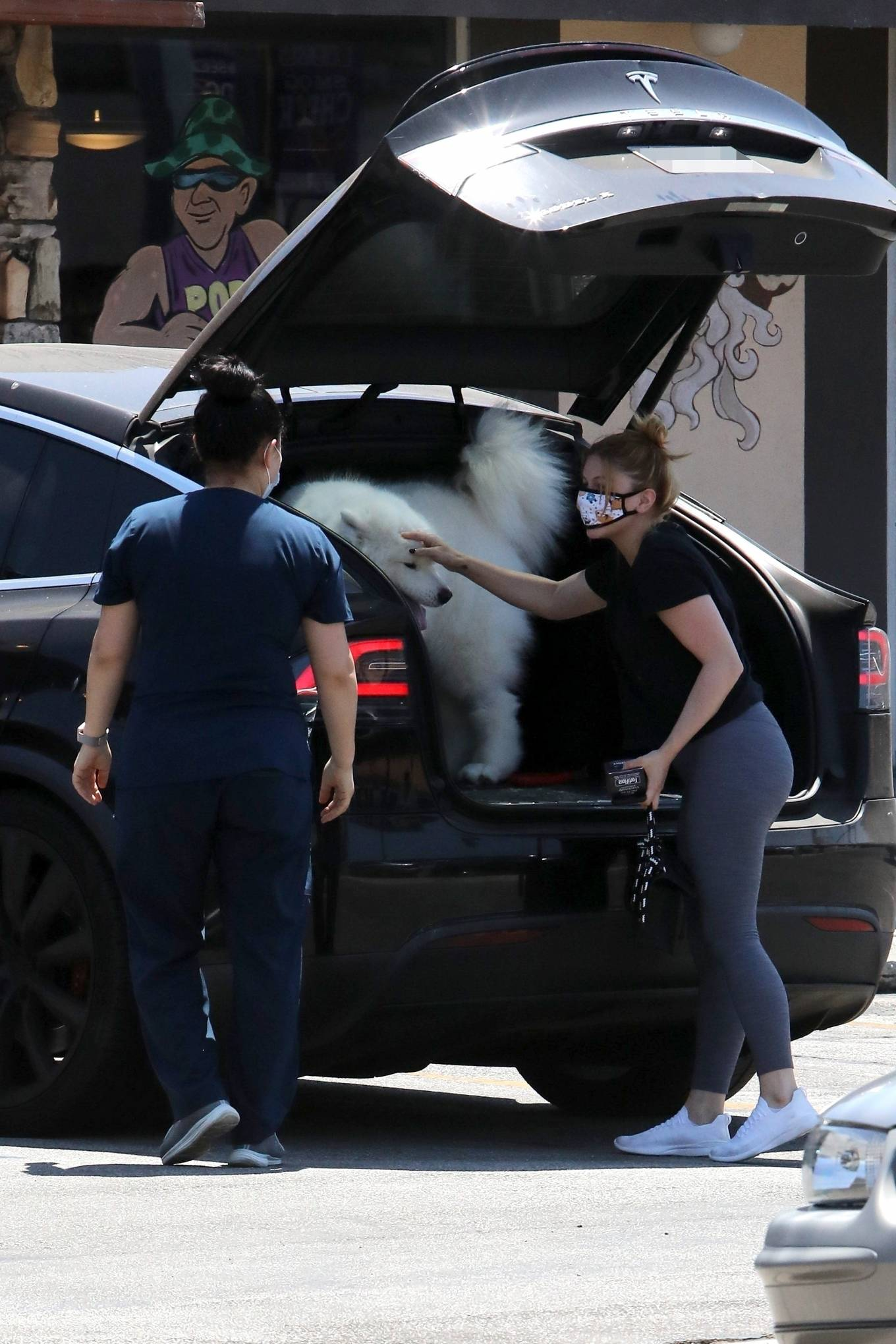 Ariel Winter 2020 : Ariel Winter – Takes her dog to the Veterinarian for a routine check up in Studio City-15