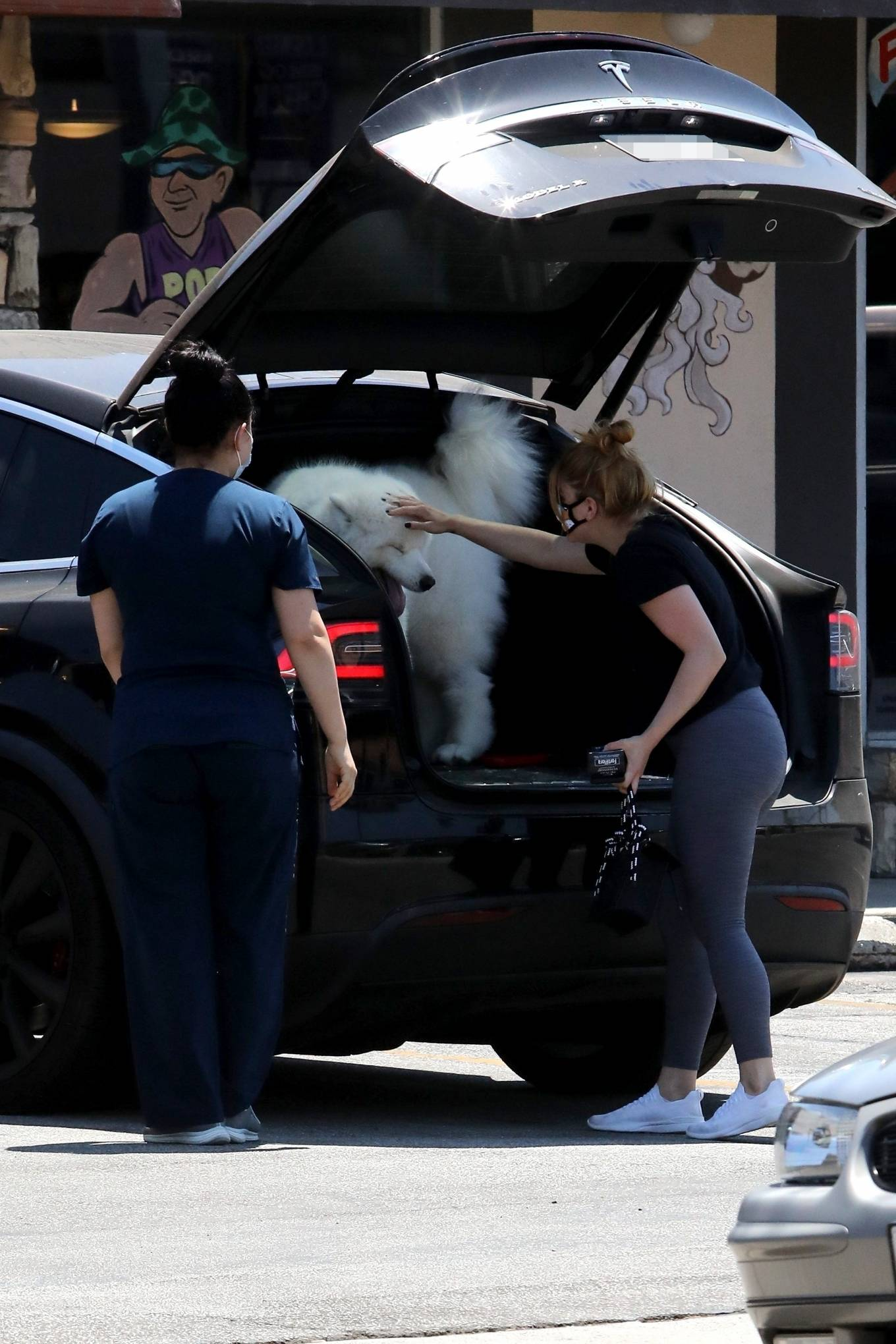 Ariel Winter 2020 : Ariel Winter – Takes her dog to the Veterinarian for a routine check up in Studio City-21
