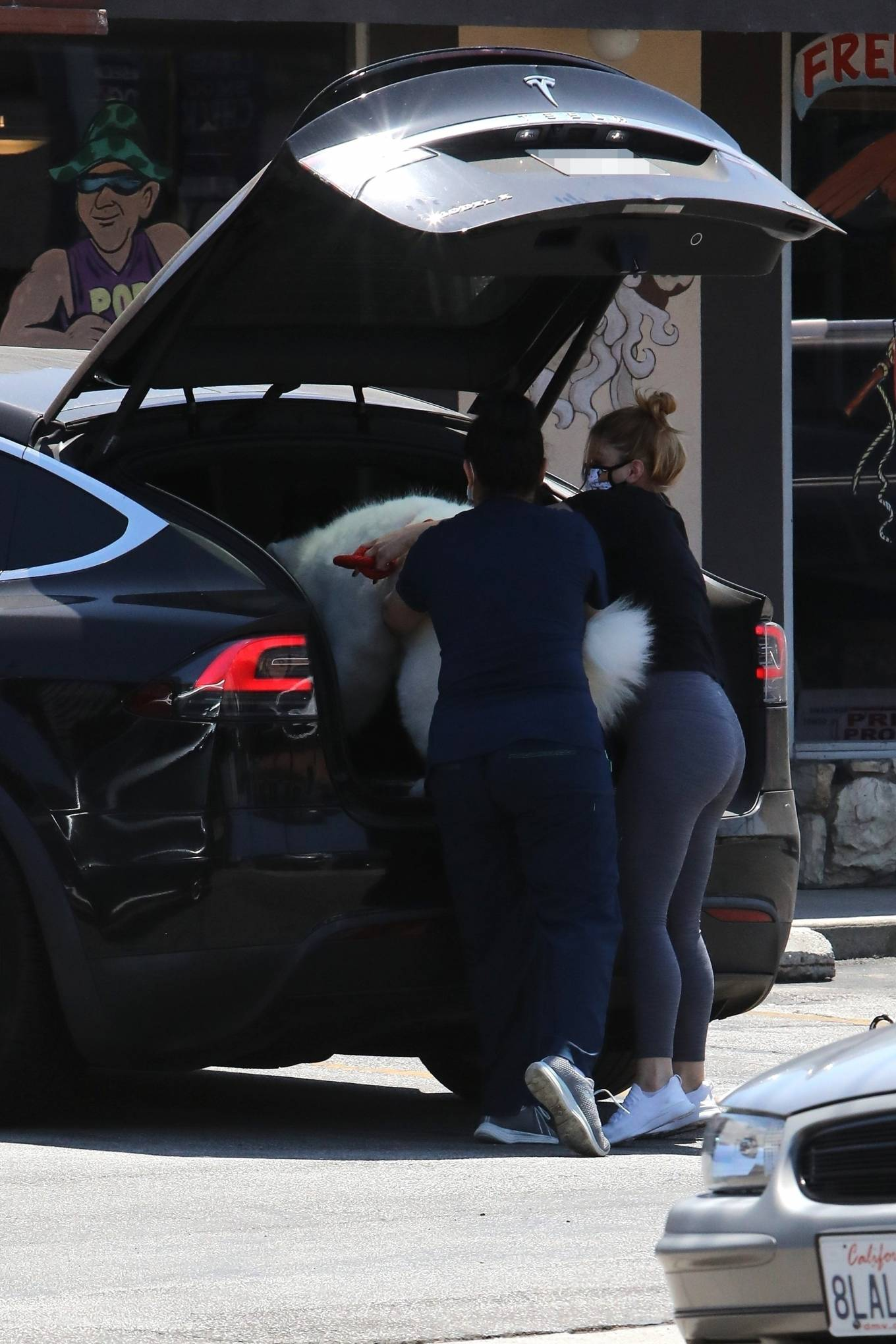 Ariel Winter 2020 : Ariel Winter – Takes her dog to the Veterinarian for a routine check up in Studio City-26