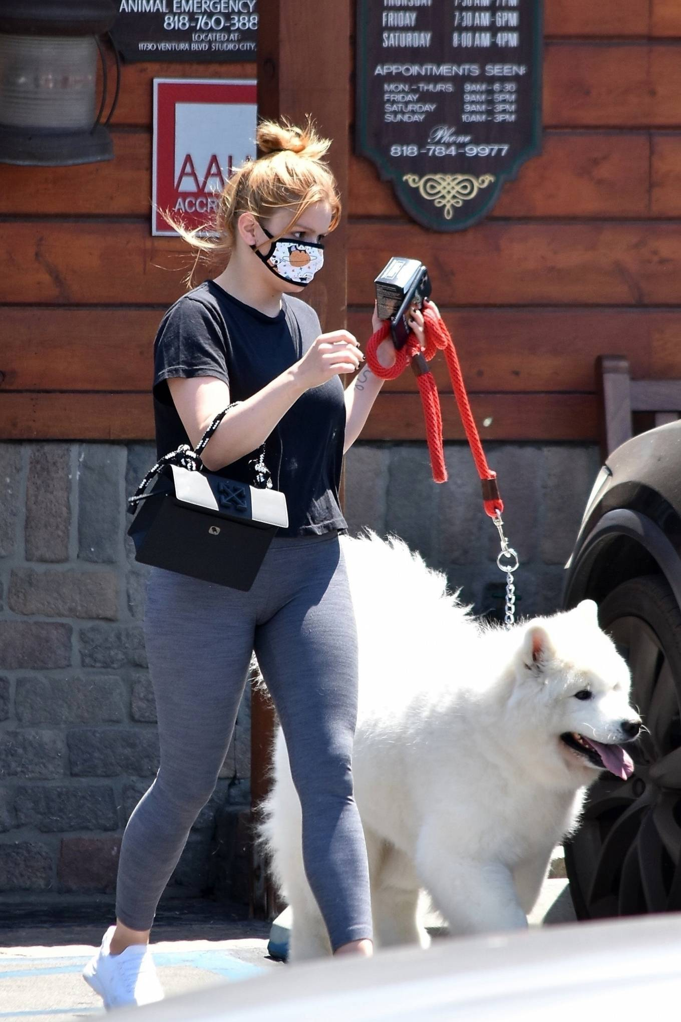 Ariel Winter 2020 : Ariel Winter – Takes her dog to the Veterinarian for a routine check up in Studio City-28