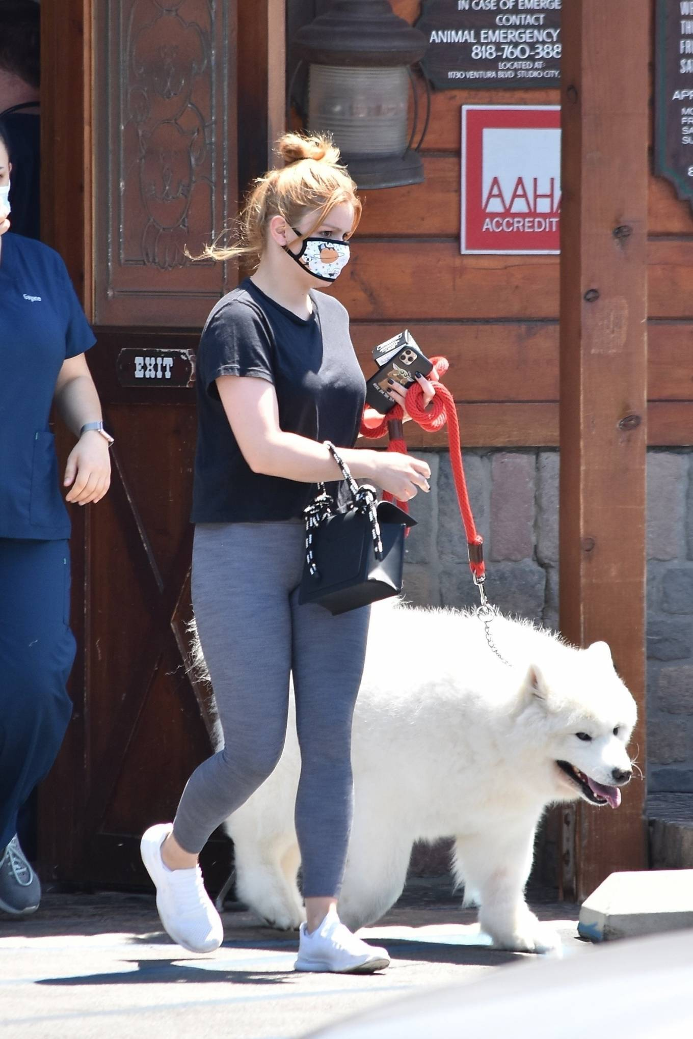 Ariel Winter 2020 : Ariel Winter – Takes her dog to the Veterinarian for a routine check up in Studio City-34