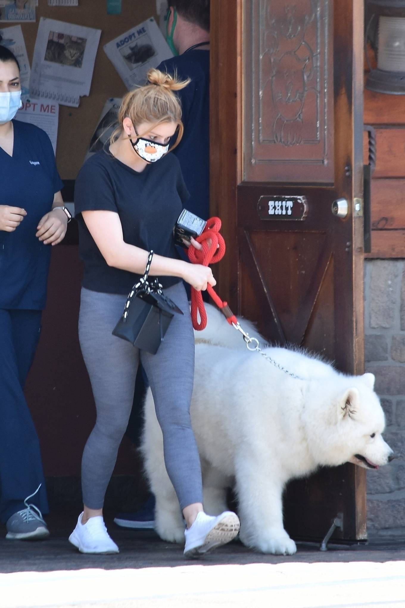 Ariel Winter 2020 : Ariel Winter – Takes her dog to the Veterinarian for a routine check up in Studio City-41
