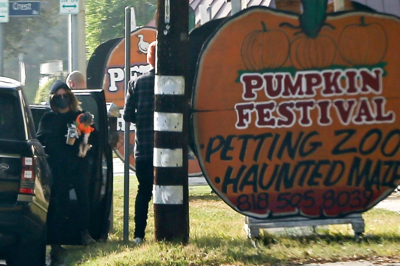 Ashley Tisdale 2020 : Ashley Tisdale – goes to a pumpkin in Los Angeles-01